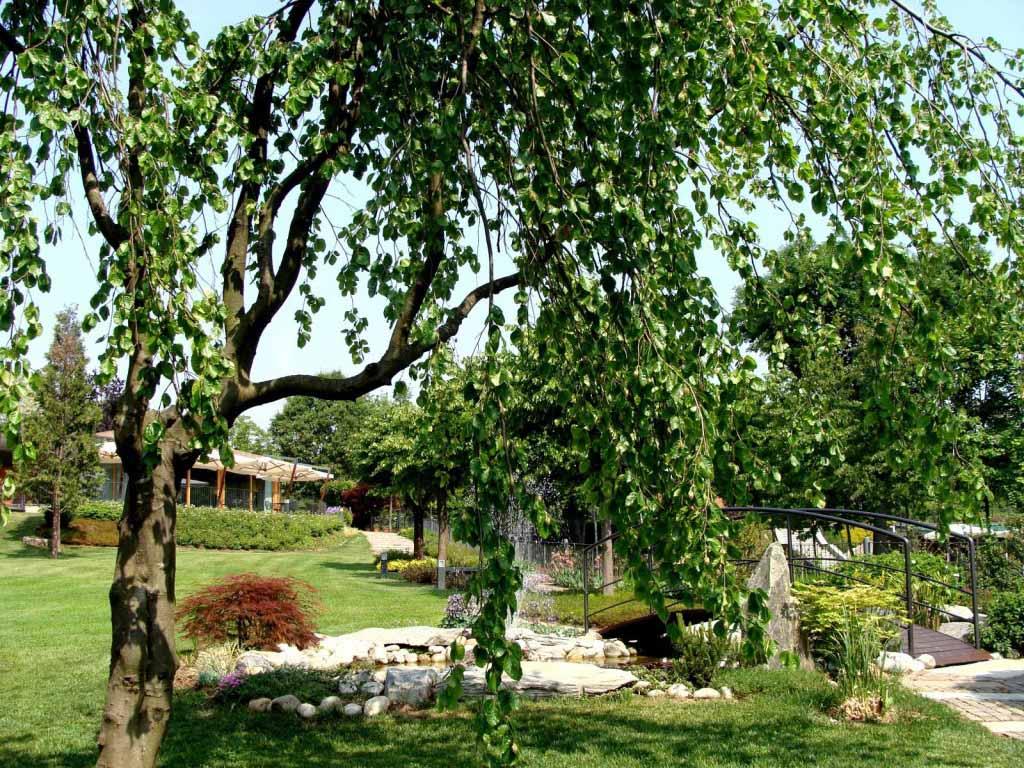 ristorante per cerimonia con giardino e parco